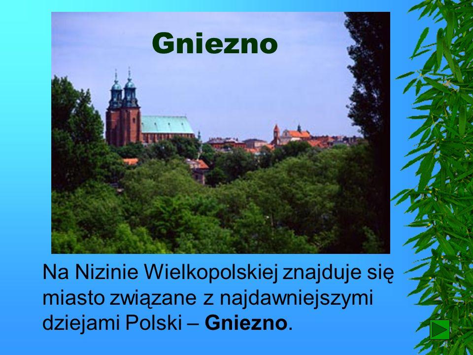 GnieznoNa Nizinie Wielkopolskiej znajduje się miasto związane z najdawniejszymi dziejami Polski – Gniezno.