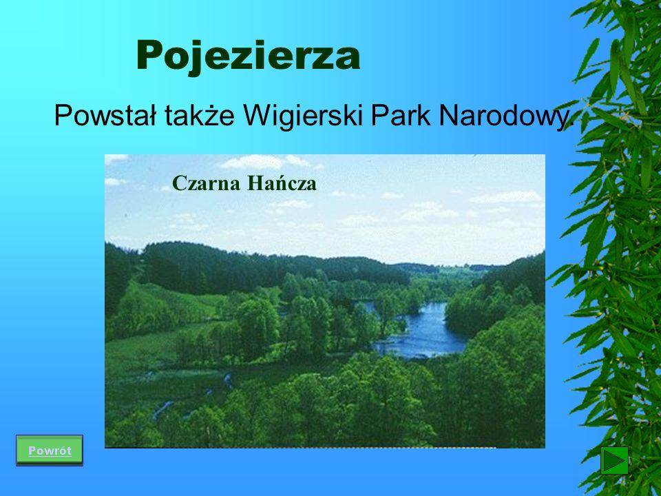 Pojezierza Powstał także Wigierski Park Narodowy. Czarna Hańcza Powrót