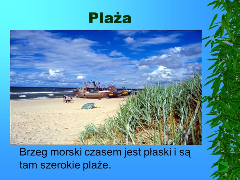 Plaża Brzeg morski czasem jest płaski i są tam szerokie plaże. 72