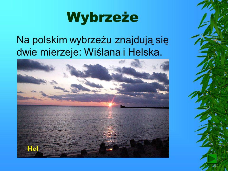 Wybrzeże Na polskim wybrzeżu znajdują się dwie mierzeje: Wiślana i Helska. Hel 75