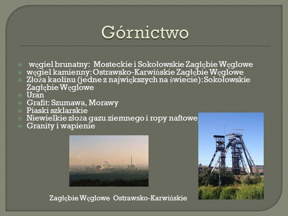 Górnictwo węgiel brunatny: Mosteckie i Sokołowskie Zagłębie Węglowe