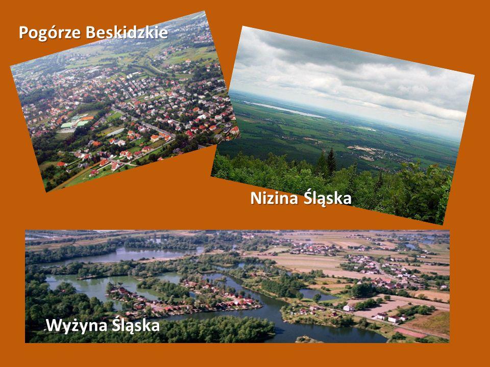 Pogórze Beskidzkie Nizina Śląska Wyżyna Śląska