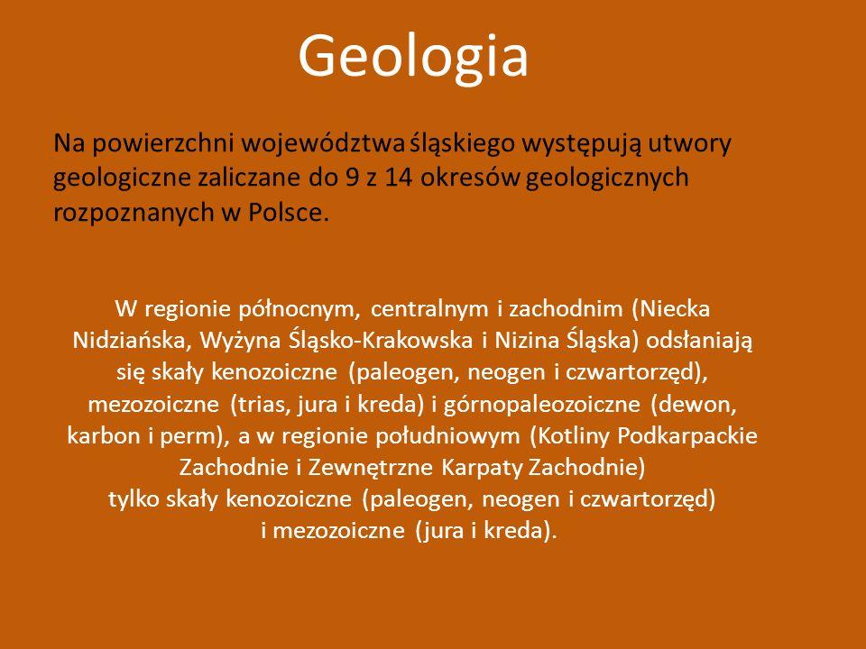 Geologia Na powierzchni województwa śląskiego występują utwory geologiczne zaliczane do 9 z 14 okresów geologicznych rozpoznanych w Polsce.