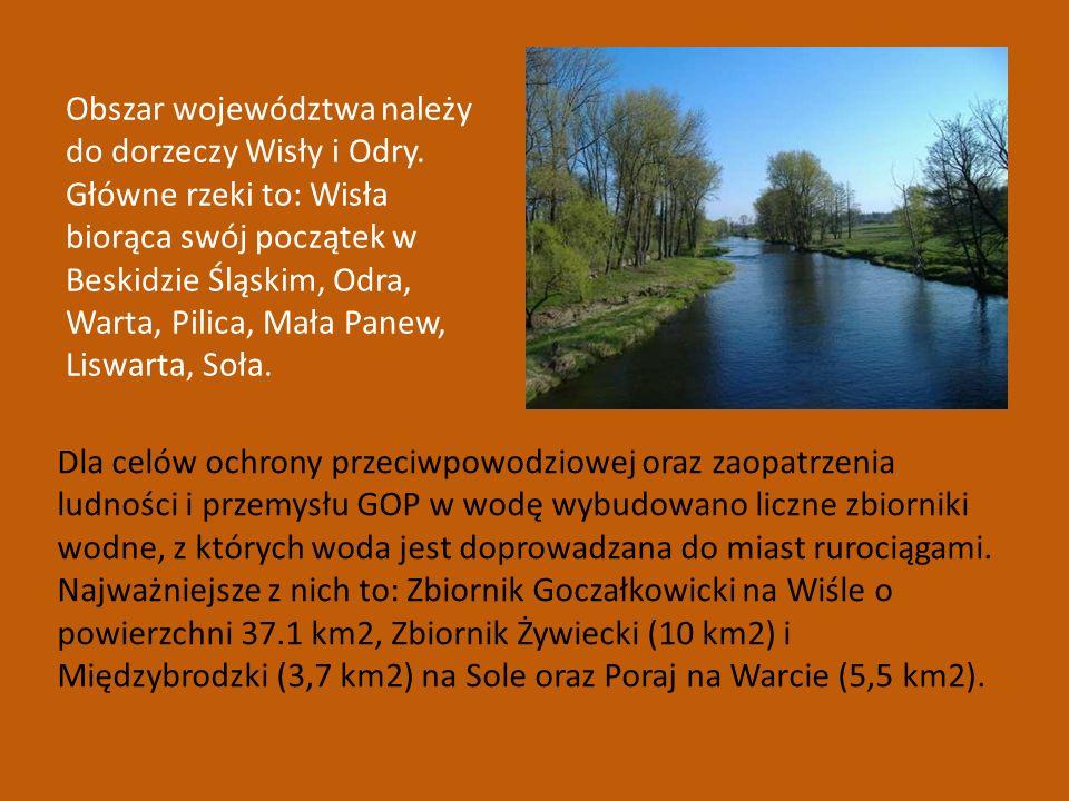 Obszar województwa należy do dorzeczy Wisły i Odry