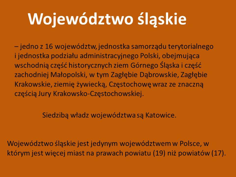 Województwo śląskie – jedno z 16 województw, jednostka samorządu terytorialnego.