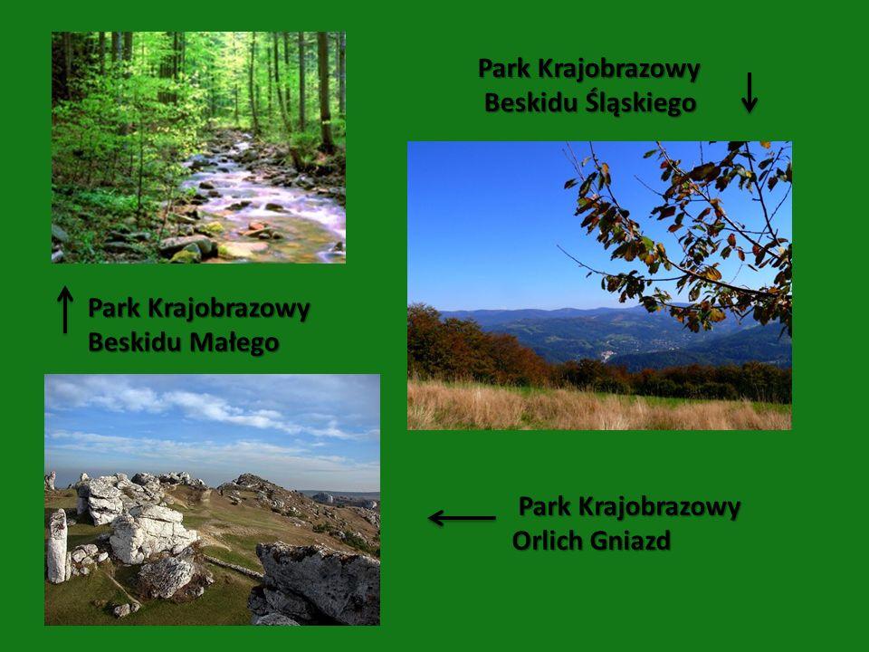 Park Krajobrazowy Beskidu Śląskiego. Park Krajobrazowy.