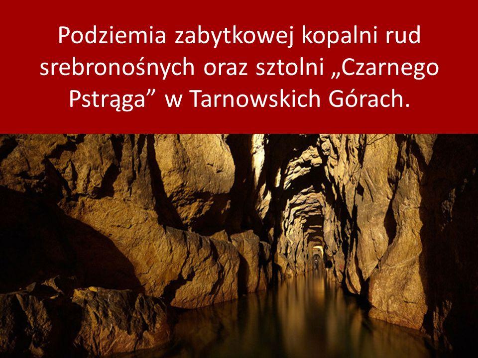 """Podziemia zabytkowej kopalni rud srebronośnych oraz sztolni """"Czarnego Pstrąga w Tarnowskich Górach."""