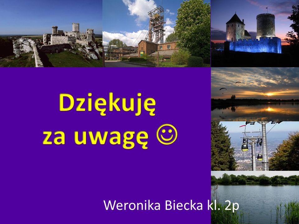 Dziękuję za uwagę  Weronika Biecka kl. 2p