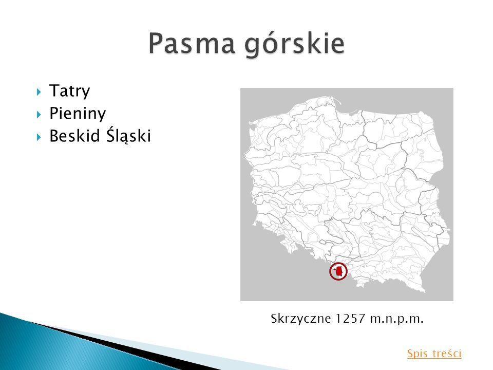 Pasma górskie Tatry Pieniny Beskid Śląski Skrzyczne 1257 m.n.p.m.