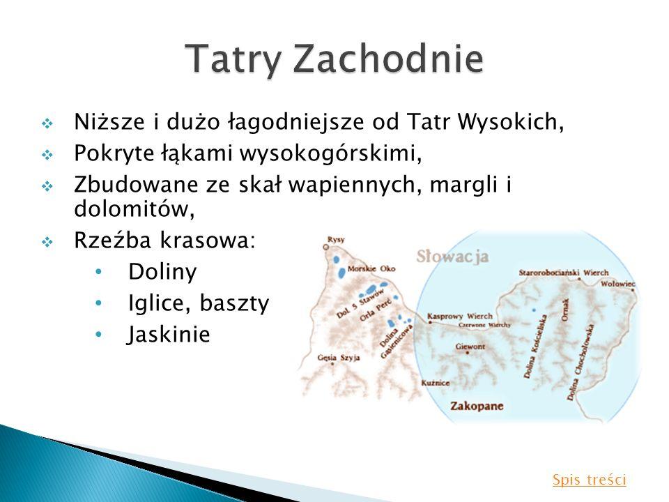 Tatry Zachodnie Niższe i dużo łagodniejsze od Tatr Wysokich,