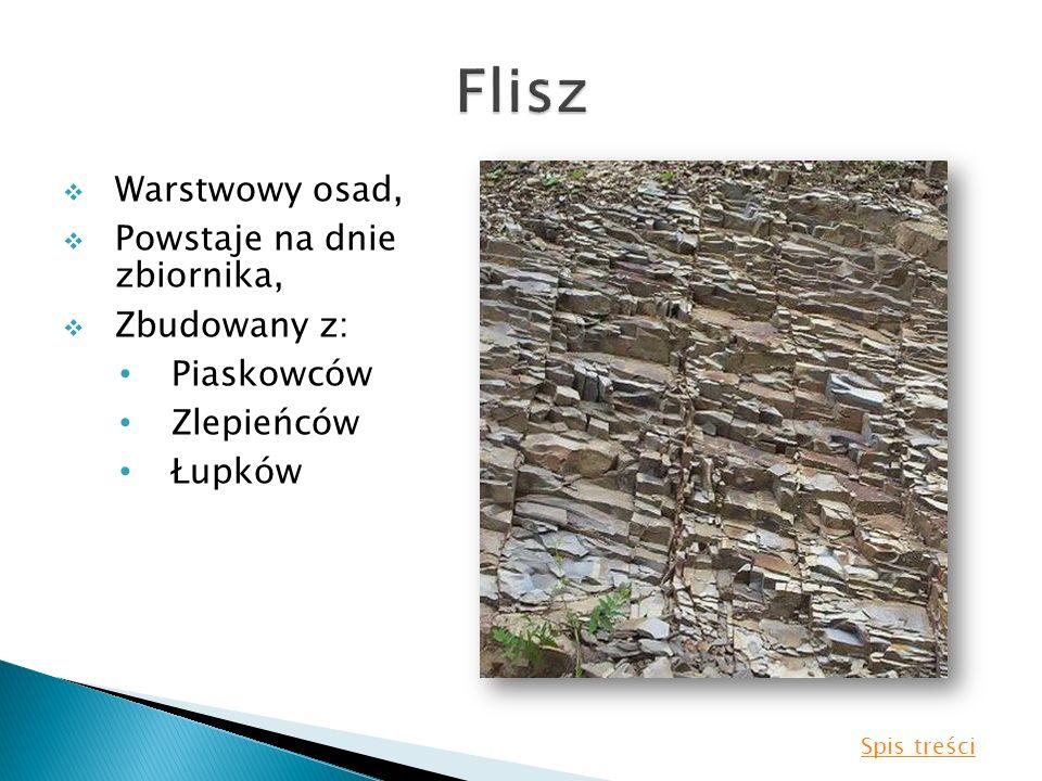 Flisz Warstwowy osad, Powstaje na dnie zbiornika, Zbudowany z: