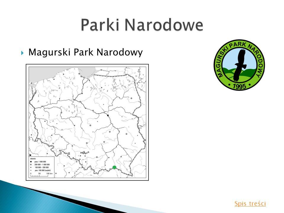 Parki Narodowe Magurski Park Narodowy Spis treści