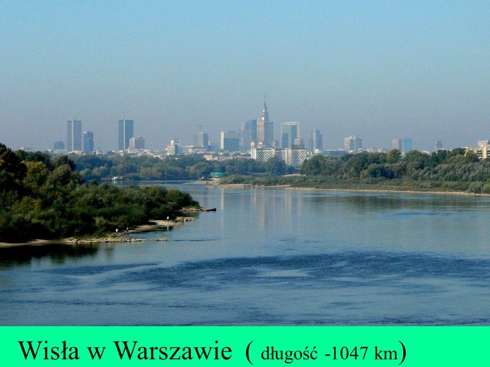 Wisła w Warszawie ( długość -1047 km)