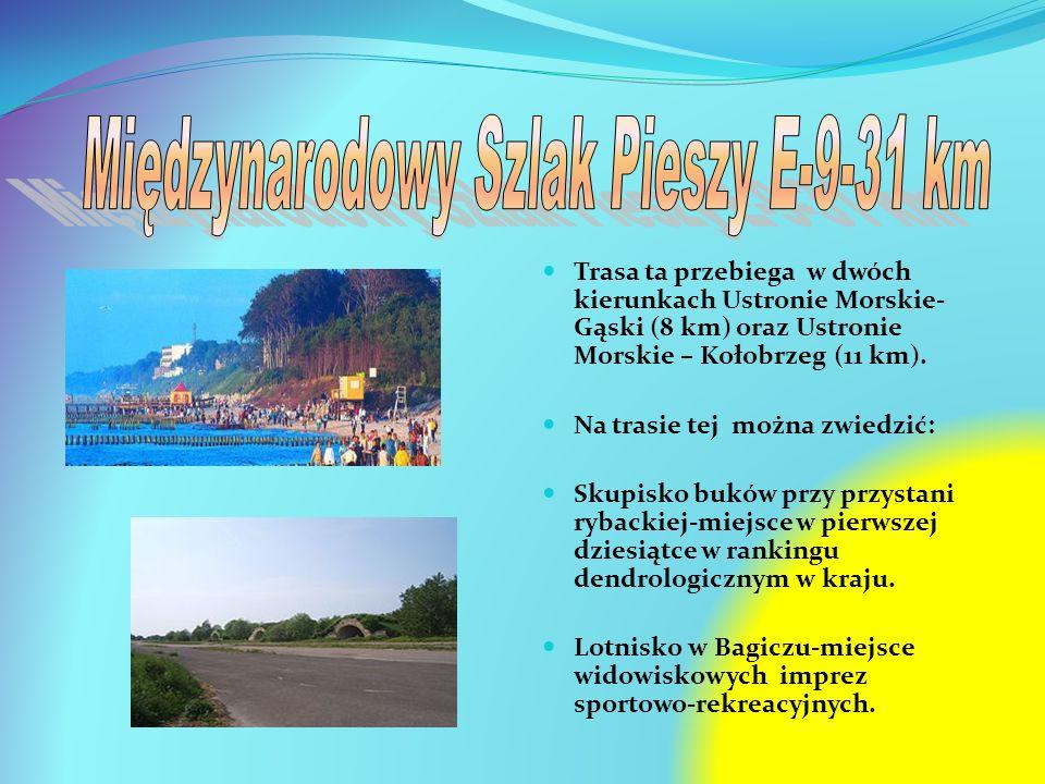 Międzynarodowy Szlak Pieszy E-9-31 km