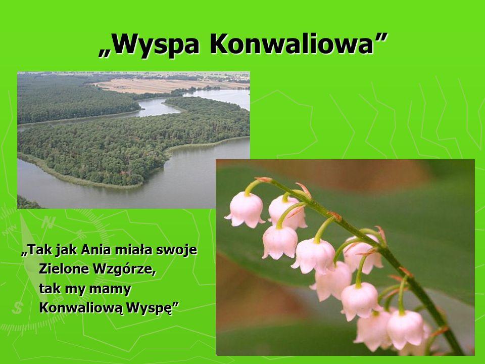 """""""Wyspa Konwaliowa """"Tak jak Ania miała swoje Zielone Wzgórze,"""