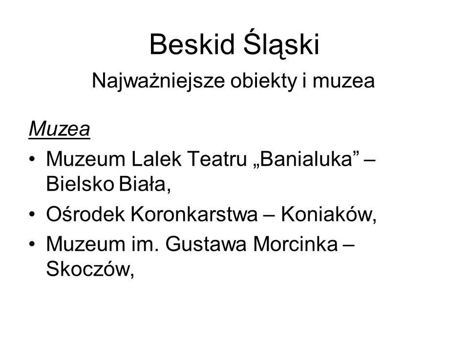 Beskid Śląski Najważniejsze obiekty i muzea Muzea