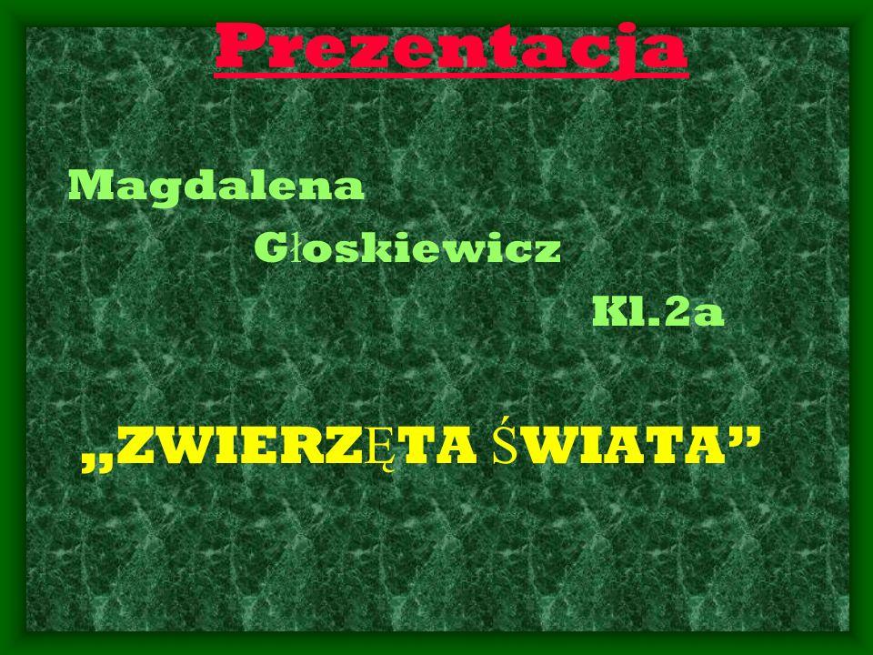 """Prezentacja Magdalena Głoskiewicz Kl.2a """"ZWIERZĘTA ŚWIATA"""