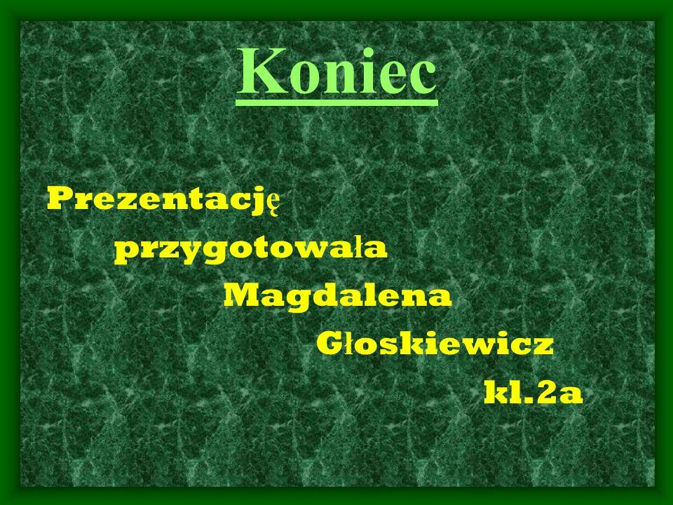 Koniec Prezentację przygotowała Magdalena Głoskiewicz kl.2a