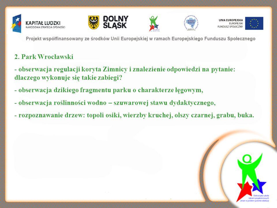 2. Park Wrocławski - obserwacja regulacji koryta Zimnicy i znalezienie odpowiedzi na pytanie: dlaczego wykonuje się takie zabiegi
