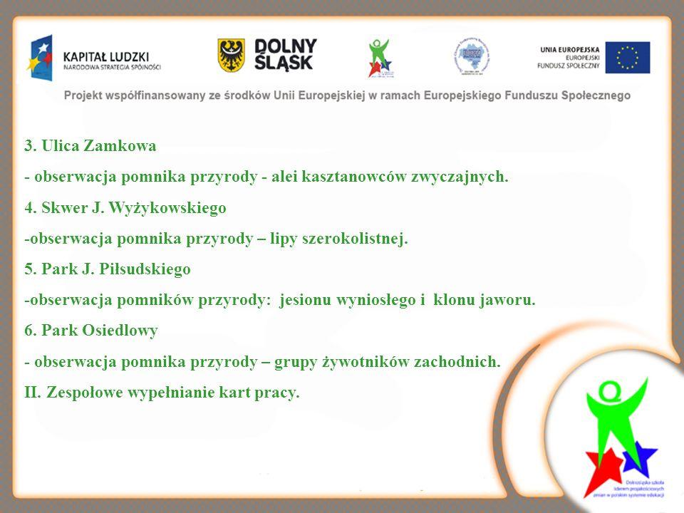 3. Ulica Zamkowa - obserwacja pomnika przyrody - alei kasztanowców zwyczajnych. 4. Skwer J. Wyżykowskiego.