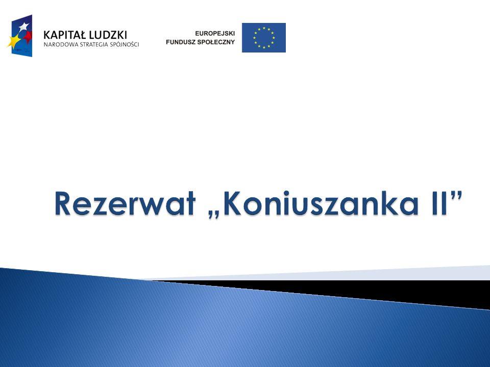 "Rezerwat ""Koniuszanka II"