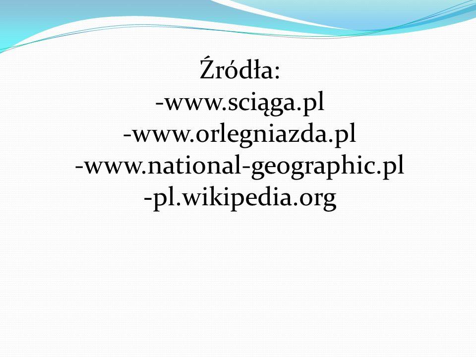 Źródła: www.sciąga.pl -www.orlegniazda.pl www.national-geographic.pl -pl.wikipedia.org