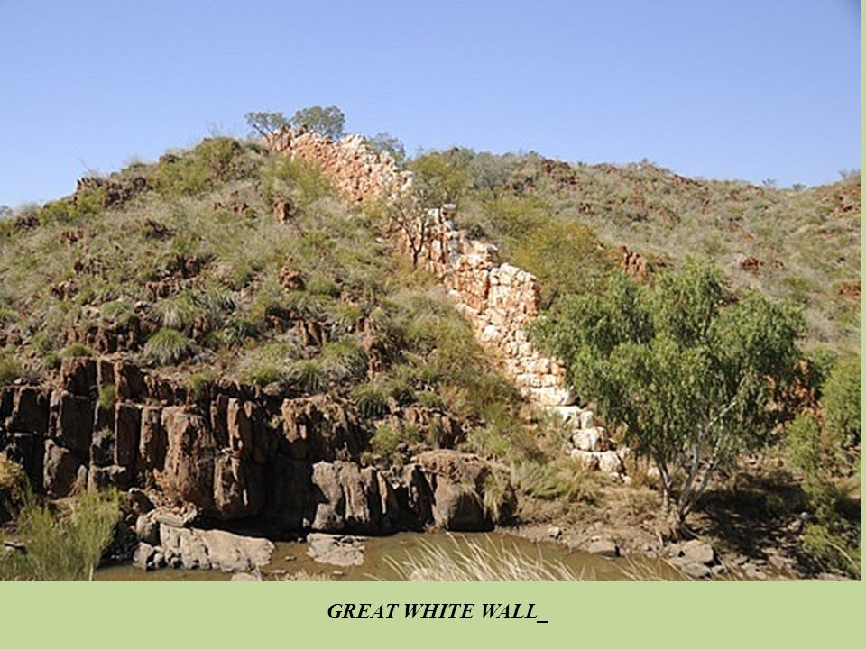 GREAT WHITE WALL_