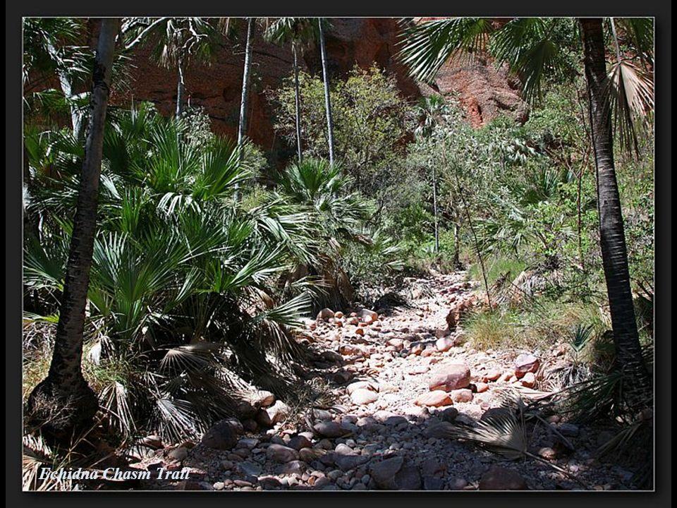 Echidna Chasm Trail