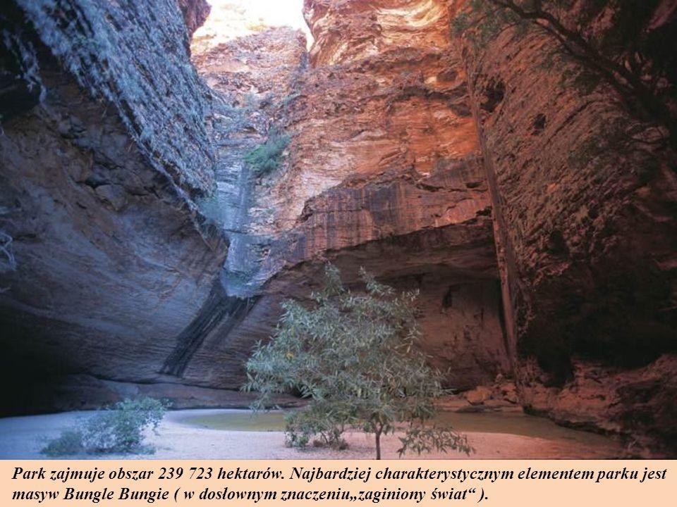 Park zajmuje obszar 239 723 hektarów