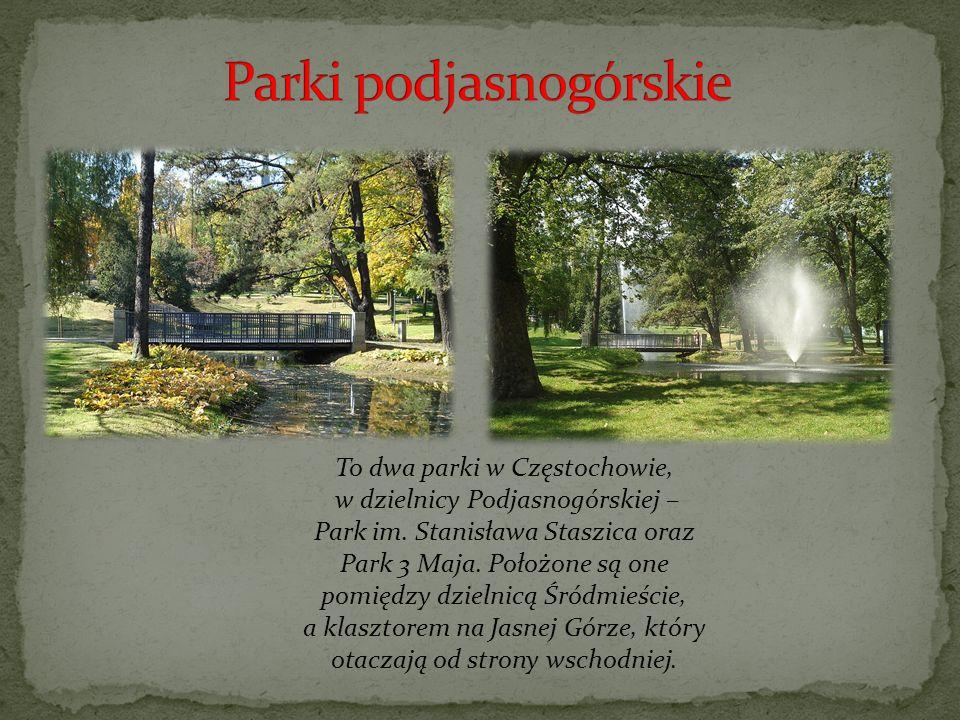 Parki podjasnogórskie