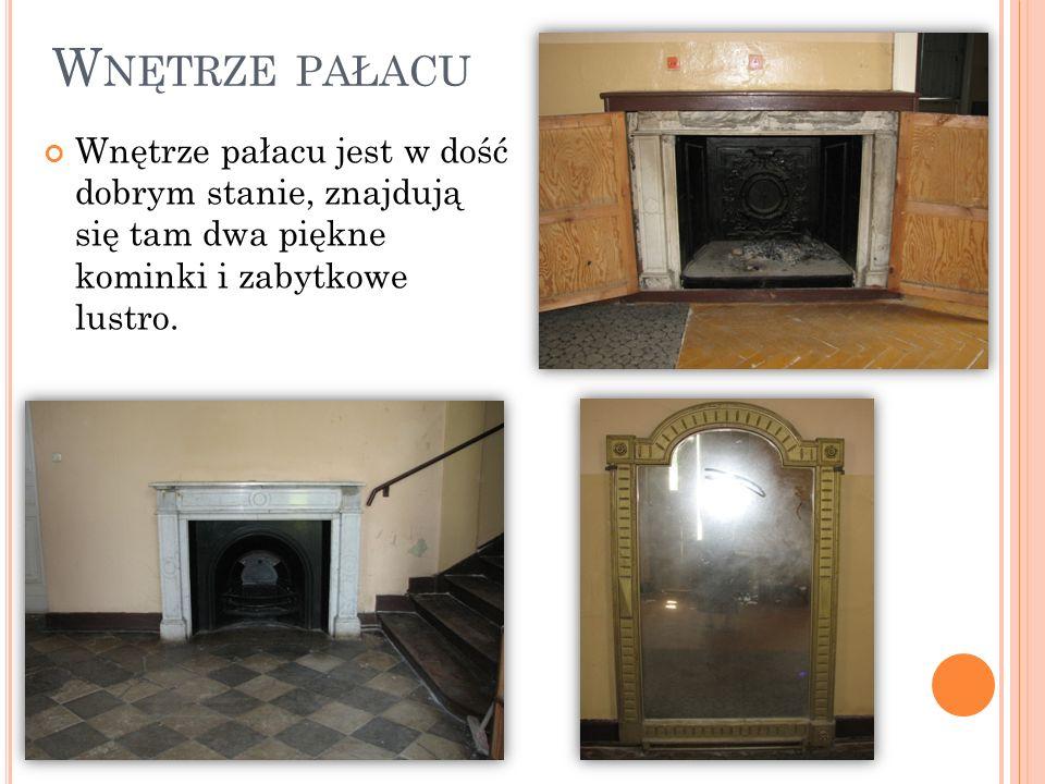 Wnętrze pałacu Wnętrze pałacu jest w dość dobrym stanie, znajdują się tam dwa piękne kominki i zabytkowe lustro.