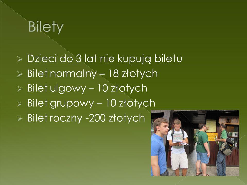 Bilety Dzieci do 3 lat nie kupują biletu Bilet normalny – 18 złotych