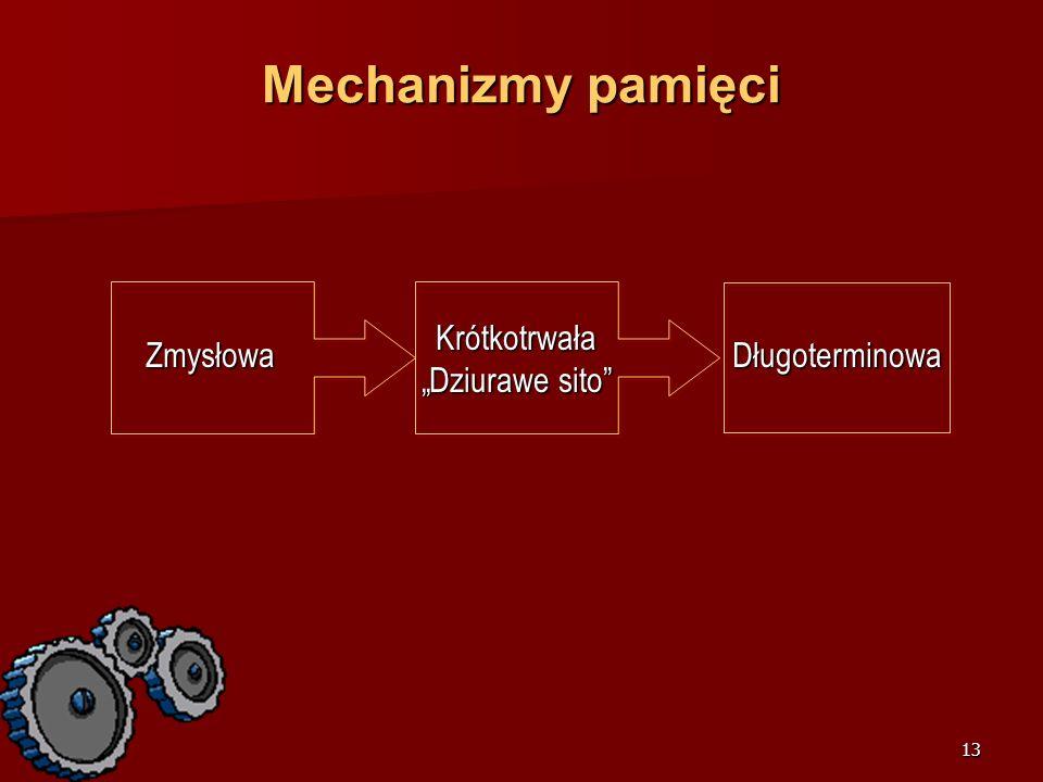 """Mechanizmy pamięci Krótkotrwała """"Dziurawe sito Zmysłowa"""