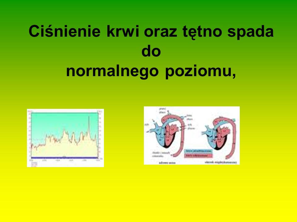 Ciśnienie krwi oraz tętno spada do normalnego poziomu,