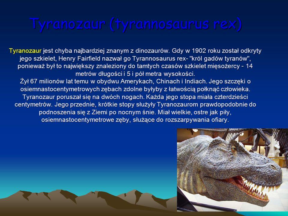 Tyranozaur (tyrannosaurus rex) Tyranozaur jest chyba najbardziej znanym z dinozaurów.