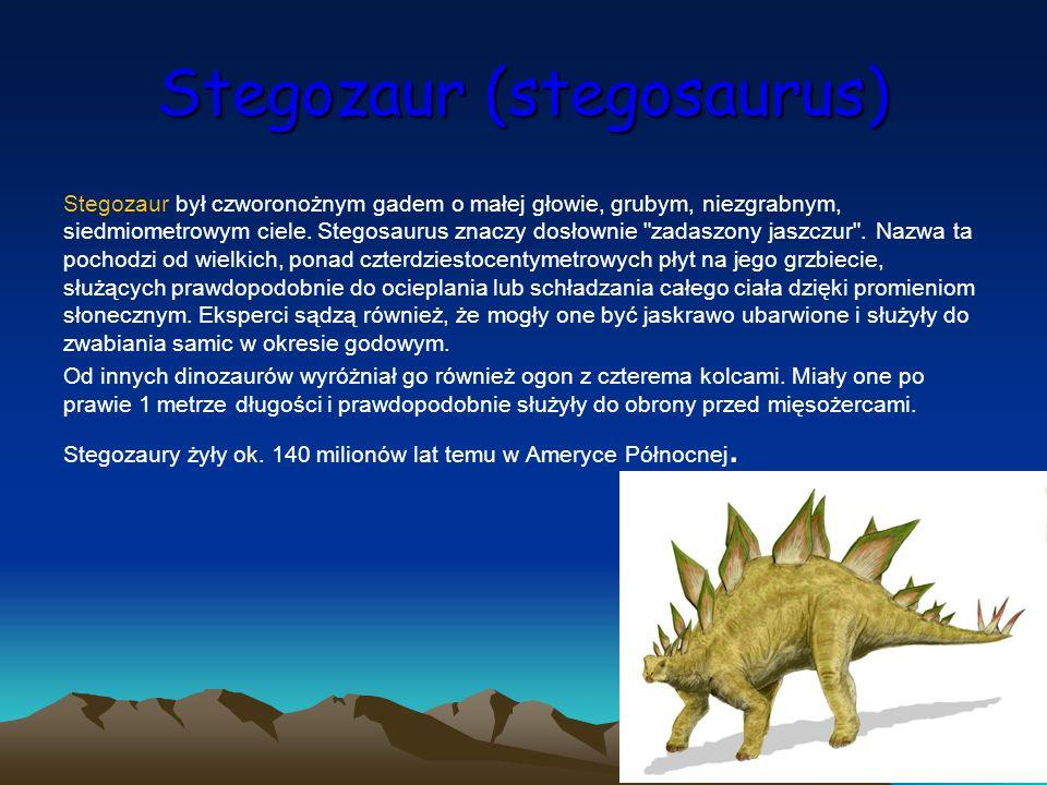Stegozaur (stegosaurus)