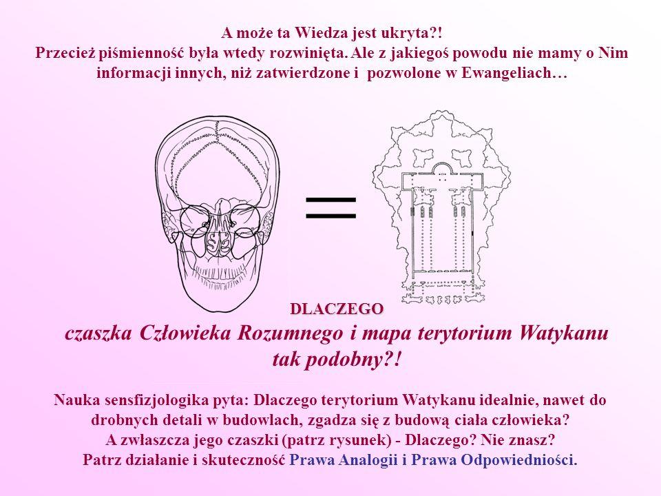 czaszka Człowieka Rozumnego i mapa terytorium Watykanu tak podobny !