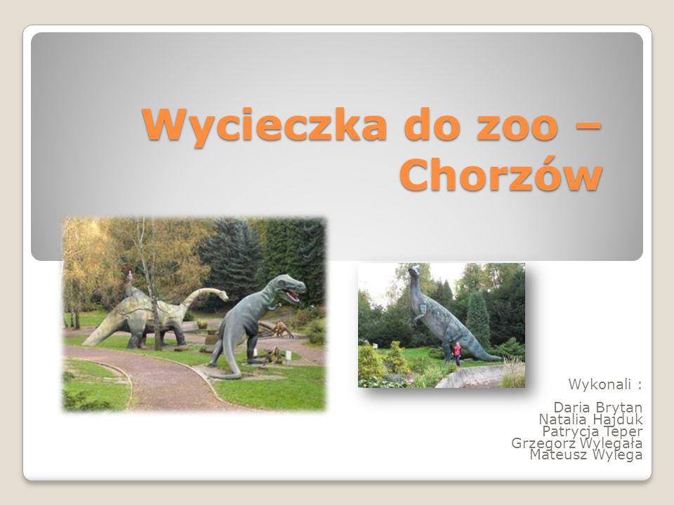 Wycieczka do zoo – Chorzów