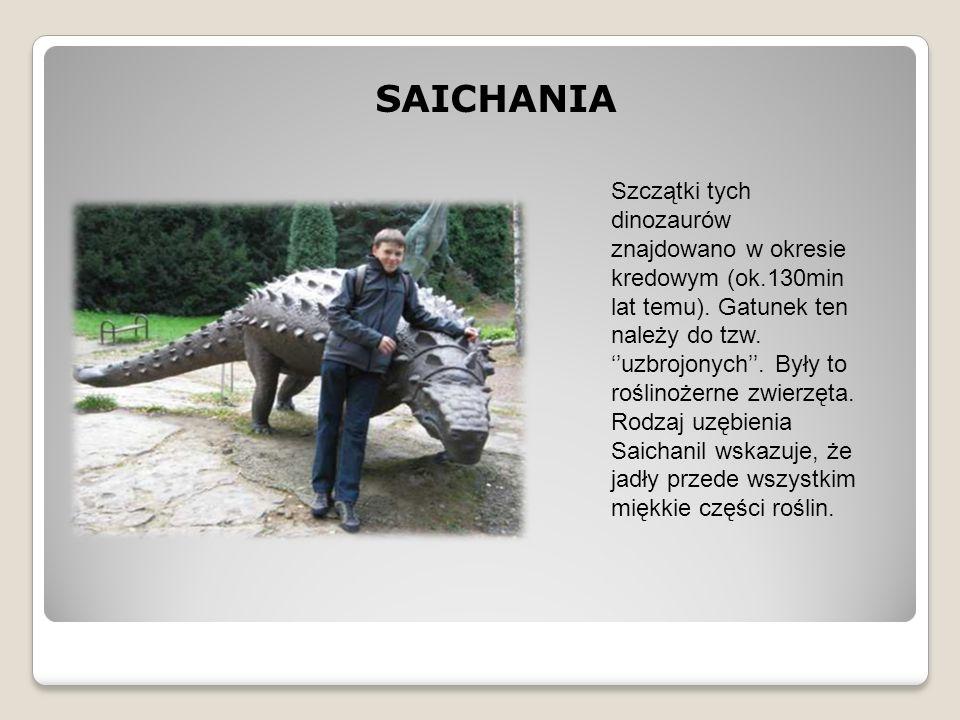 SAICHANIA