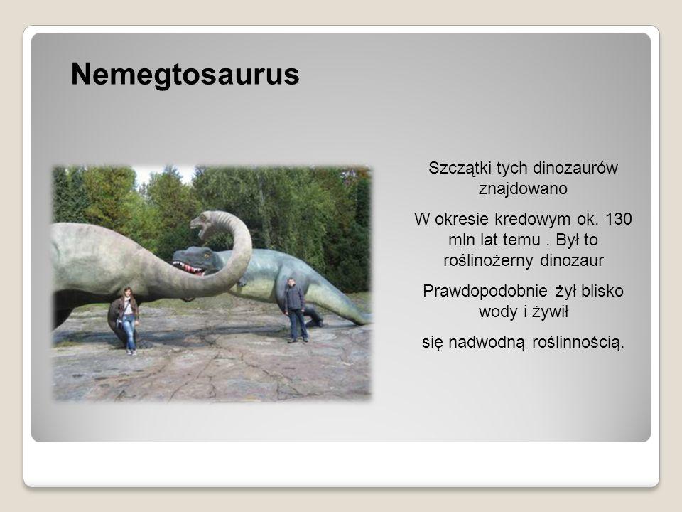 Nemegtosaurus Szczątki tych dinozaurów znajdowano