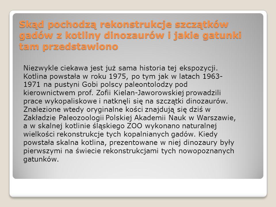 Skąd pochodzą rekonstrukcje szczątków gadów z kotliny dinozaurów i jakie gatunki tam przedstawiono