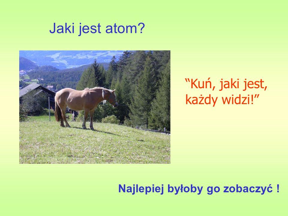 Jaki jest atom Kuń, jaki jest, każdy widzi!