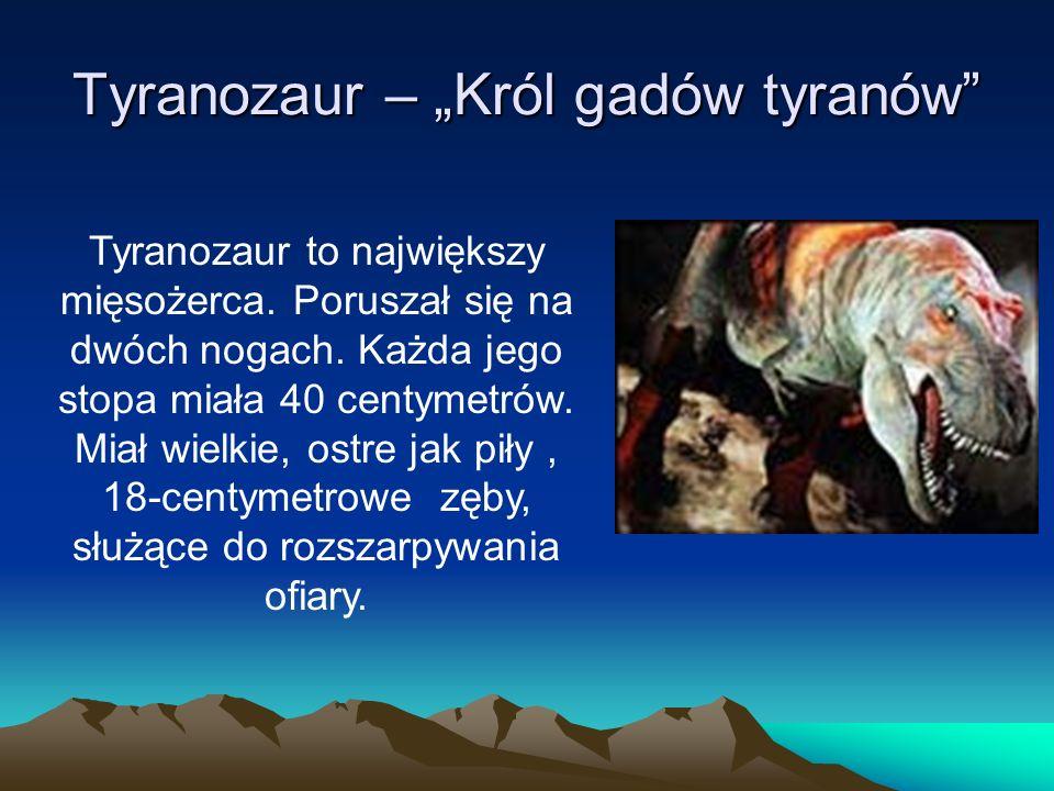 """Tyranozaur – """"Król gadów tyranów"""