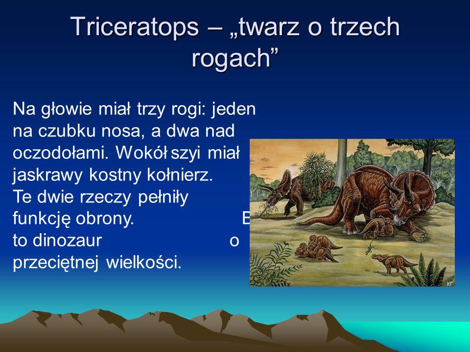 """Triceratops – """"twarz o trzech rogach"""