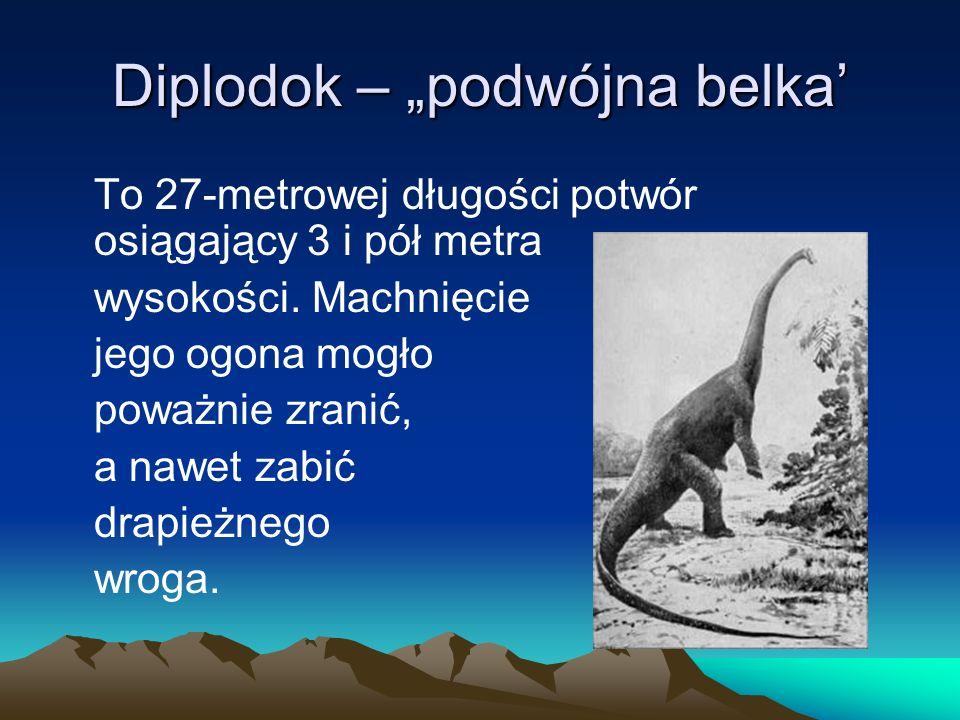 "Diplodok – ""podwójna belka'"