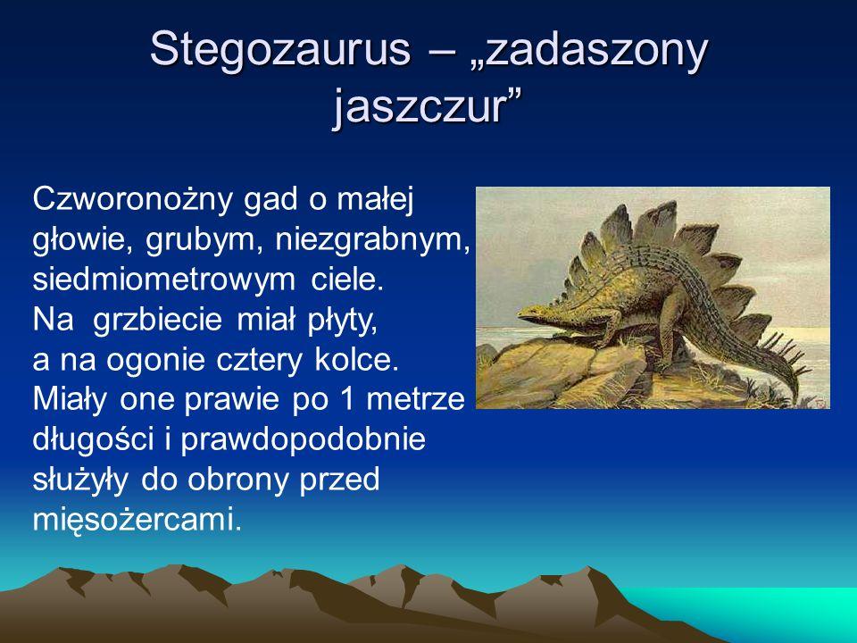 """Stegozaurus – """"zadaszony jaszczur"""