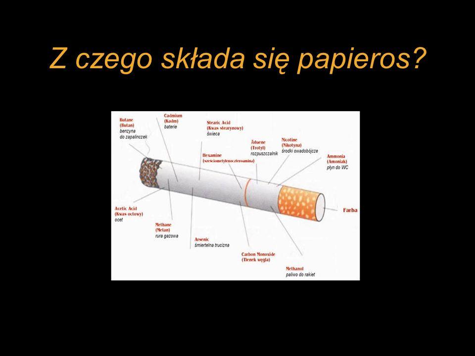 Z czego składa się papieros