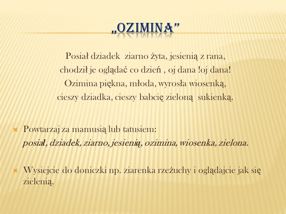 """""""Ozimina Posiał dziadek ziarno żyta, jesienią z rana,"""
