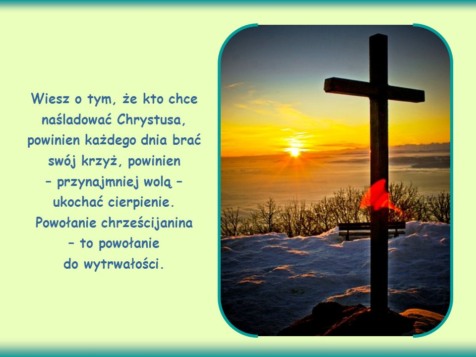 Wiesz o tym, że kto chce naśladować Chrystusa, powinien każdego dnia brać swój krzyż, powinien – przynajmniej wolą – ukochać cierpienie.