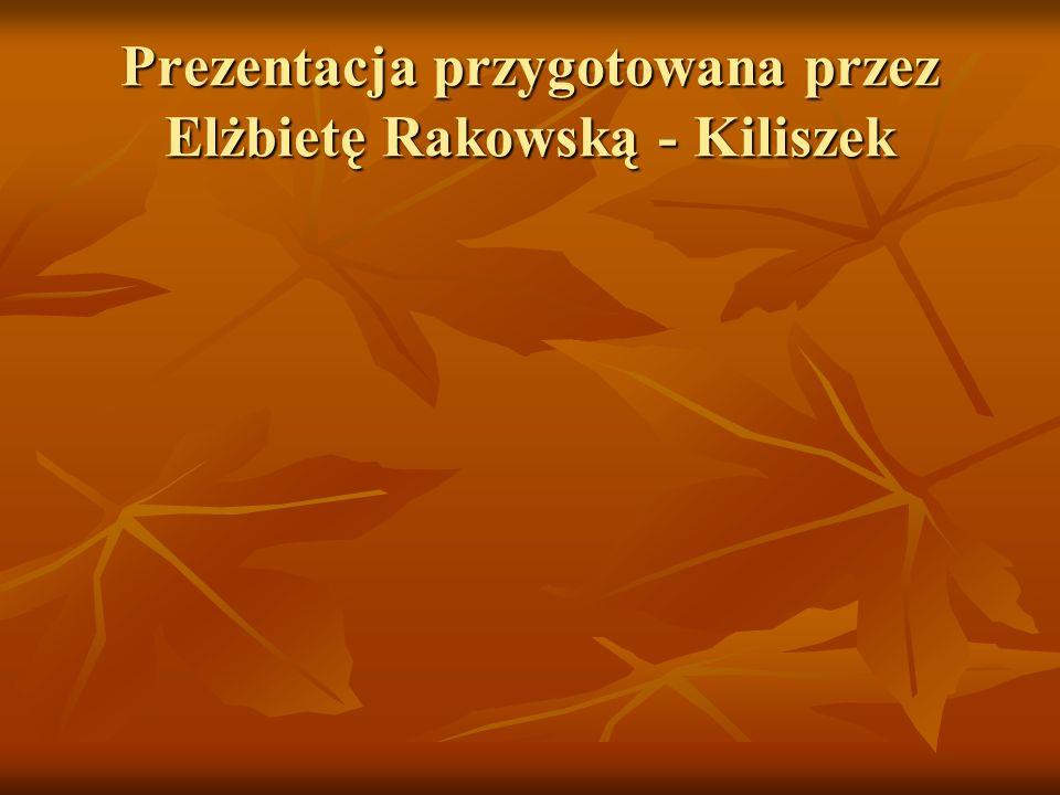 Prezentacja przygotowana przez Elżbietę Rakowską - Kiliszek